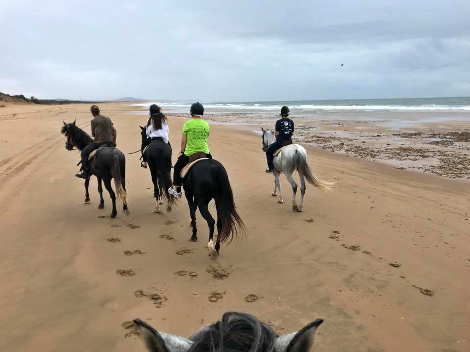 Horseback riding along the coast in Essaouira.