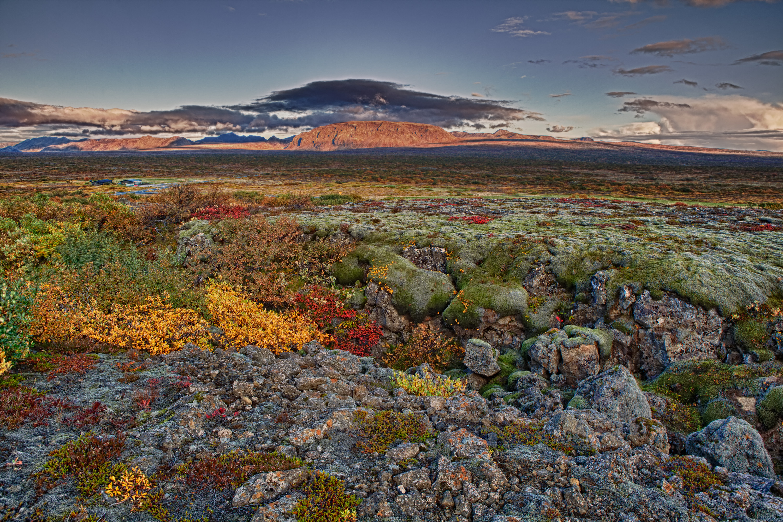 Photo courtesy of the Iceland Tourism Board, Iceland's Thingvellir National Park