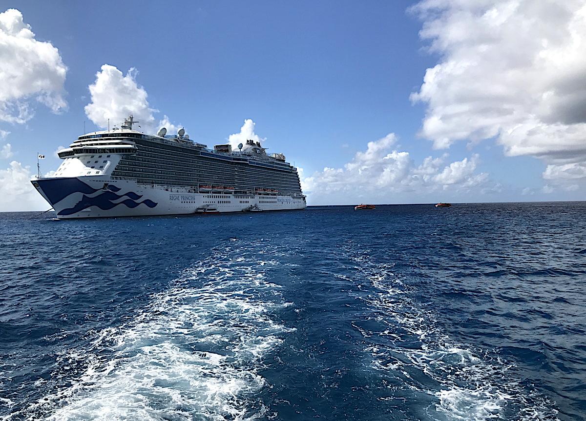 CLASSROOM AT SEA. Princess Cruises' Regal Princess (above) was home to TravelOnly's Symposium at Sea conference last week.