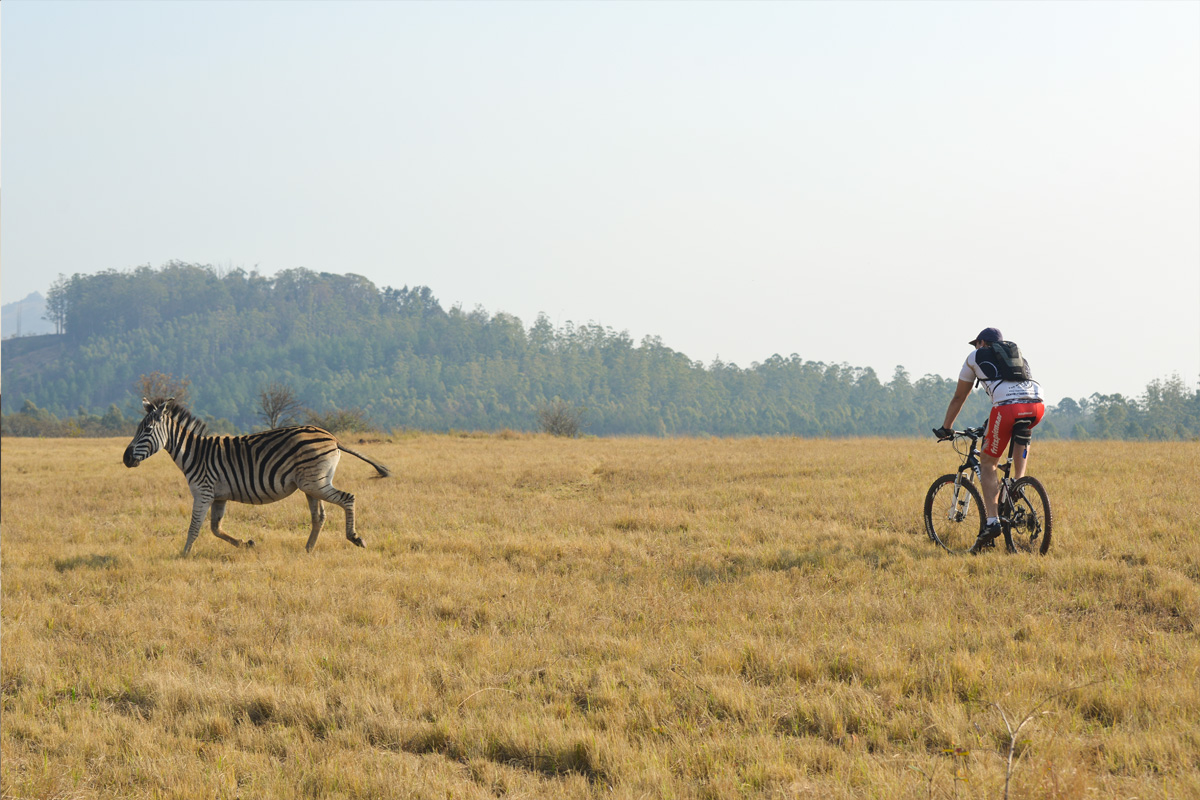 Biking in Milwane Nature Reserve
