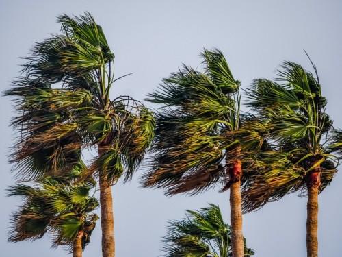 Tips for safe travel during hurricane season